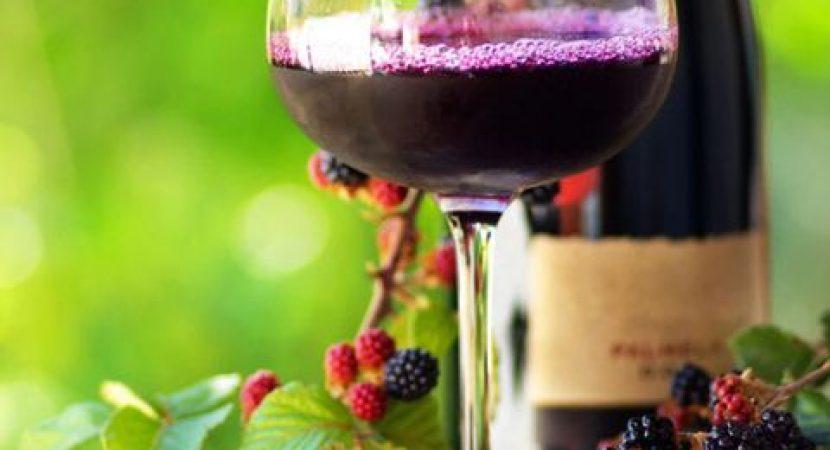 making wine from juice or berries