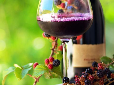making wine from juice or berries